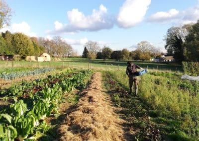 Smala Farming